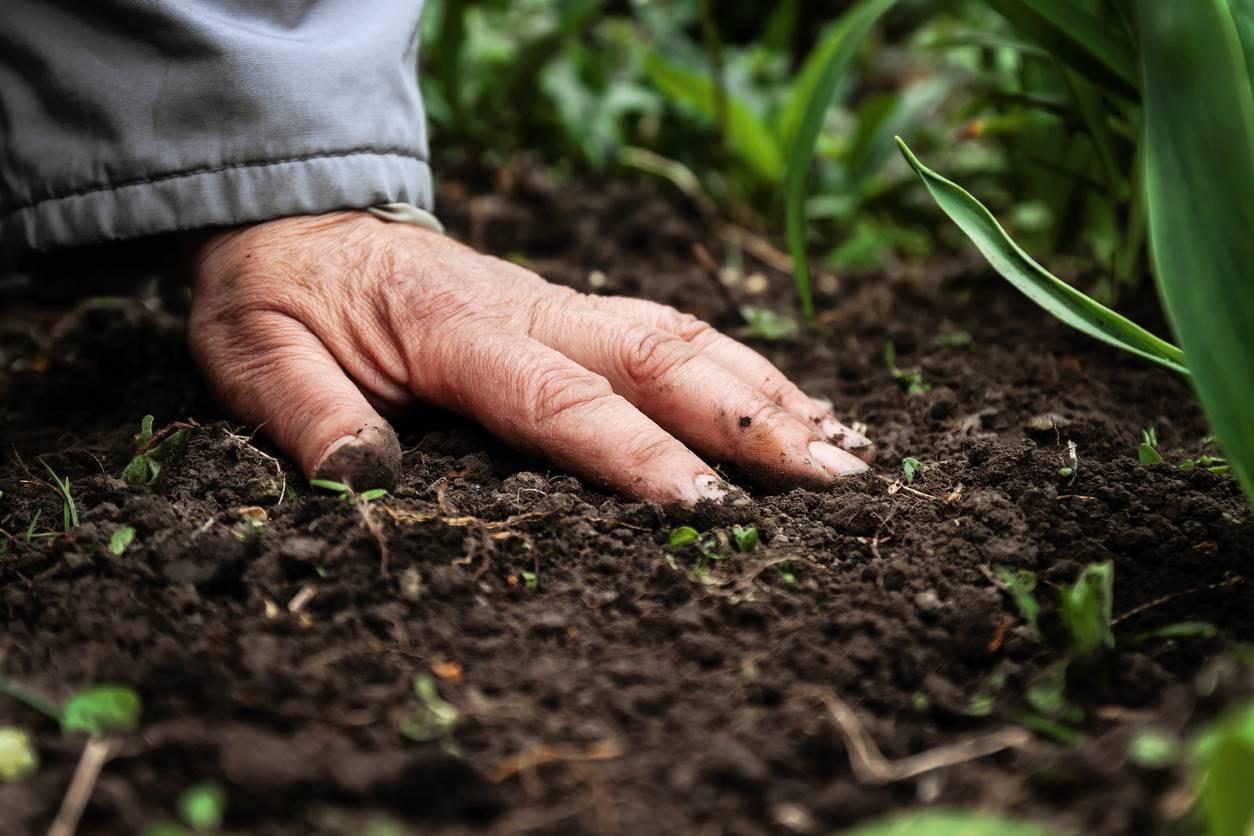 entretien sol agriculture